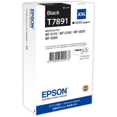 Epson T789140